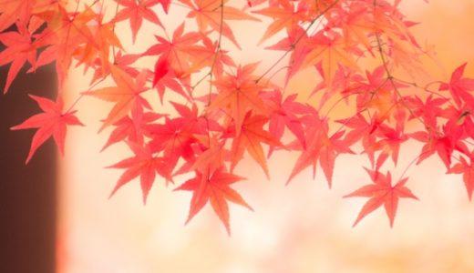 【太る時期】肥ゆる秋は本当?!